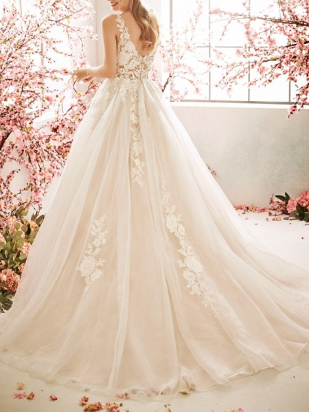 A-Line Wedding Dresses V Neck Sweep \ Brush Train Tulle Sleeveless Vintage Sexy Wedding Dress in Color See-Through Backless_3