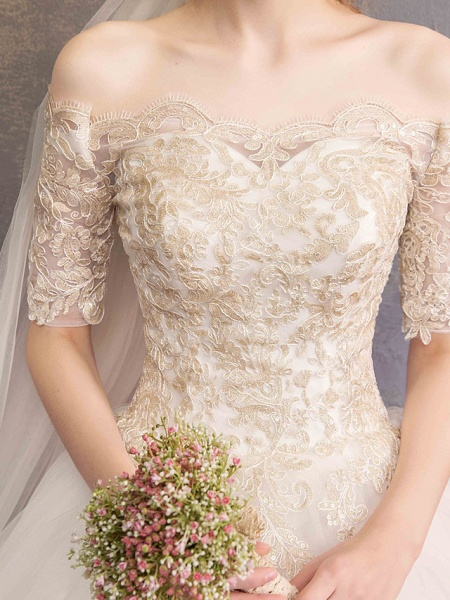 Ball Gown Wedding Dresses Off Shoulder Floor Length Tulle Lace Over Satin Half Sleeve Glamorous Illusion Detail_9
