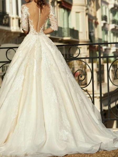 Ball Gown V Neck Sweep \ Brush Train Tulle Polyester Half Sleeve Country Plus Size Wedding Dresses_3