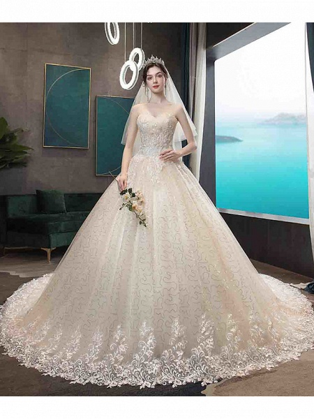 Ball Gown Wedding Dresses Strapless Court Train Tulle Strapless Country Glamorous Illusion Detail_3