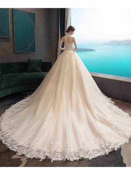 Ball Gown Wedding Dresses Strapless Court Train Tulle Strapless Country Glamorous Illusion Detail_6