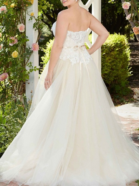 A-Line Wedding Dresses Sweetheart Neckline Court Train Tulle Sleeveless Country Wedding Dress in Color_5