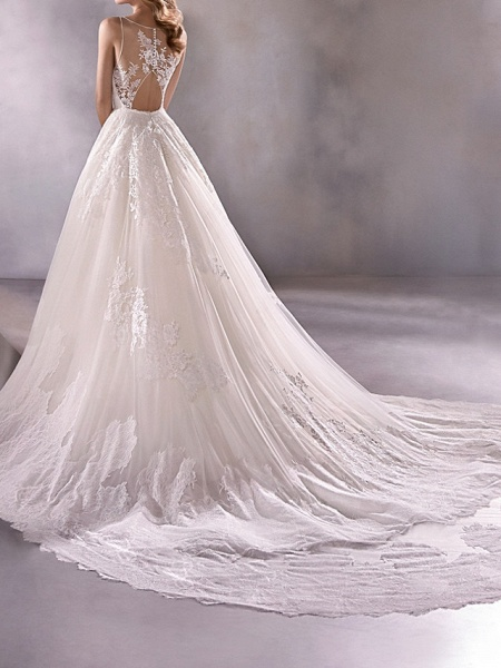 A-Line Plunging Neck Court Train Lace Tulle Sleeveless Country Plus Size Wedding Dresses_2