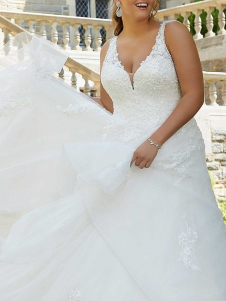 A-Line V Neck Watteau Train Lace Tulle Sleeveless Formal Sexy Plus Size Wedding Dresses_2