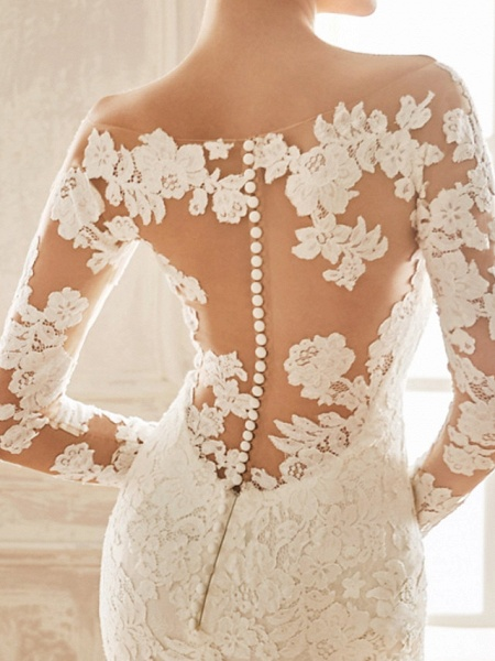 Mermaid \ Trumpet V Neck Sweep \ Brush Train Chiffon Lace Long Sleeve Half Sleeve Vintage Sexy Wedding Dress in Color See-Through Backless Wedding Dresses_2