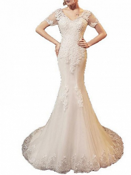 Mermaid \ Trumpet Wedding Dresses V Neck Sweep \ Brush Train Lace Tulle Short Sleeve Beach Illusion Detail Plus Size_5