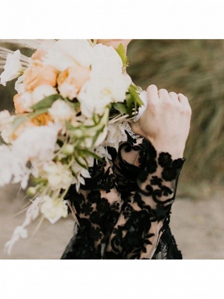 A-Line V Neck Court Train Lace Tulle Long Sleeve Country Plus Size Black Wedding Dresses_4