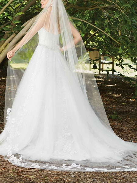 A-Line Wedding Dresses Sweetheart Neckline Court Train Lace Sleeveless Sexy Wedding Dress in Color_4