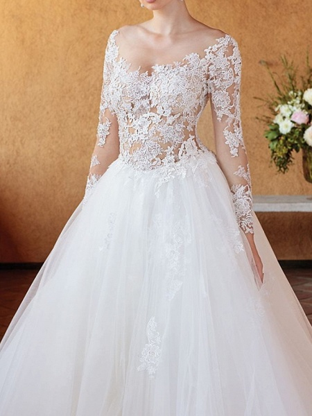Ball Gown Wedding Dresses V Neck Chapel Train Tulle 3\4 Length Sleeve Sexy Wedding Dress in Color See-Through_3