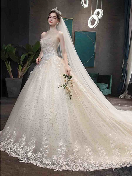 Ball Gown Wedding Dresses Strapless Court Train Tulle Strapless Country Glamorous Illusion Detail_11