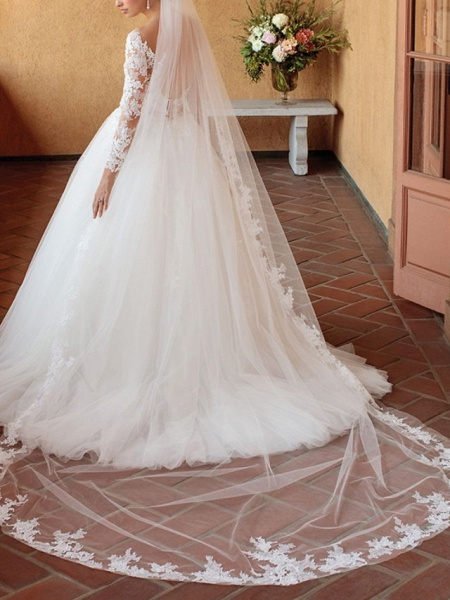Ball Gown Wedding Dresses V Neck Chapel Train Tulle 3\4 Length Sleeve Sexy Wedding Dress in Color See-Through_4