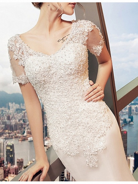 Mermaid \ Trumpet Wedding Dresses V Neck Sweep \ Brush Train Lace Tulle Short Sleeve Beach Illusion Detail Plus Size_3