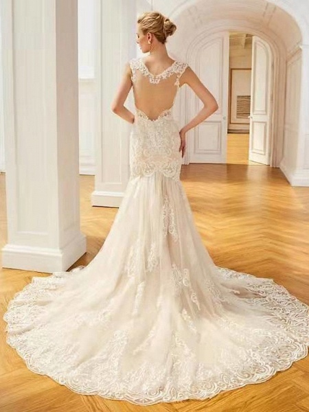 Mermaid \ Trumpet V Neck Sweep \ Brush Train Lace Regular Straps Country Wedding Dresses_3
