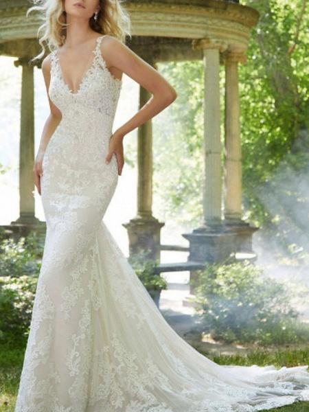 A-Line V Neck Watteau Train Lace Sleeveless Sexy Backless Wedding Dresses_3