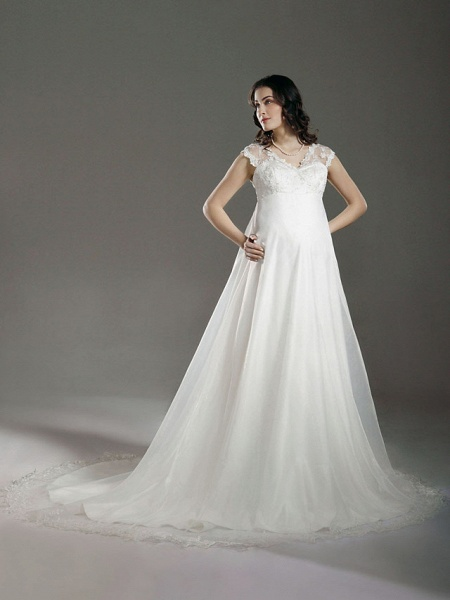 A-Line Wedding Dresses V Neck Court Train Lace Organza Regular Straps See-Through_1