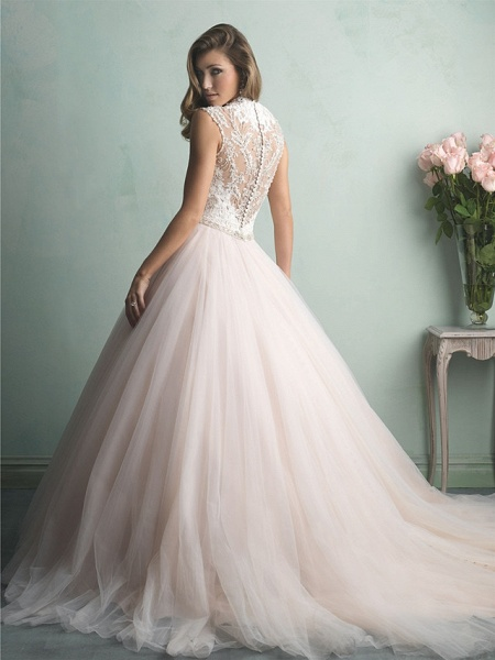 A-Line Wedding Dresses V Neck Sweep \ Brush Train Tulle Regular Straps Romantic See-Through Illusion Detail Backless_2