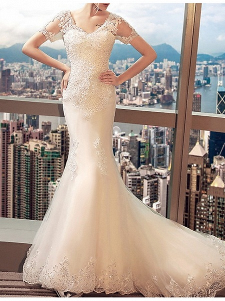 Mermaid \ Trumpet Wedding Dresses V Neck Sweep \ Brush Train Lace Tulle Short Sleeve Beach Illusion Detail Plus Size_2