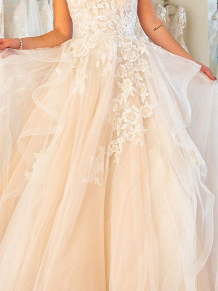 Ball Gown Wedding Dresses Strapless Sweep \ Brush Train Lace Tulle Sleeveless Formal Plus Size_3
