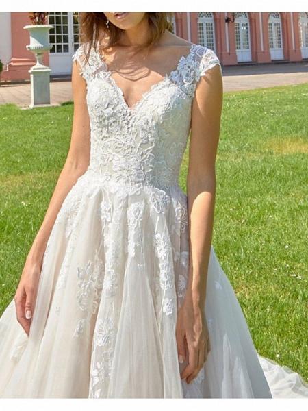 A-Line V Neck Court Train Lace Tulle Polyester Regular Straps Formal Plus Size Wedding Dresses_3