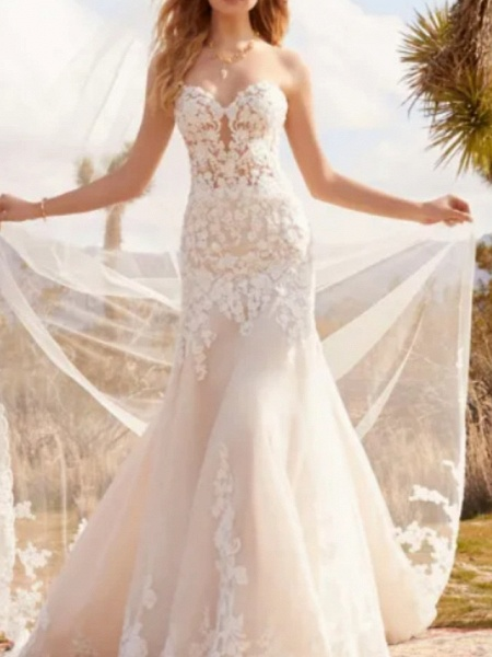 A-Line Wedding Dresses Sweetheart Neckline Court Train Tulle Strapless Formal Plus Size_1