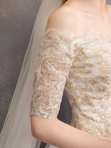 Ball Gown Wedding Dresses Off Shoulder Floor Length Tulle Lace Over Satin Half Sleeve Glamorous Illusion Detail_10