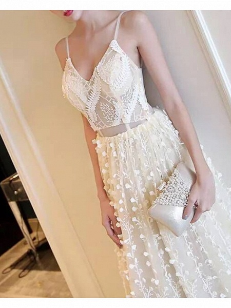 A-Line Wedding Dresses V Neck Sweep \ Brush Train Lace Tulle Spaghetti Strap Simple Casual Beach Plus Size_2