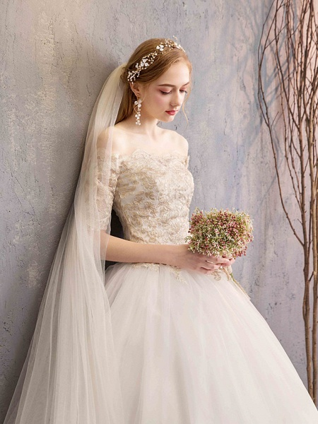 Ball Gown Wedding Dresses Off Shoulder Floor Length Tulle Lace Over Satin Half Sleeve Glamorous Illusion Detail_8