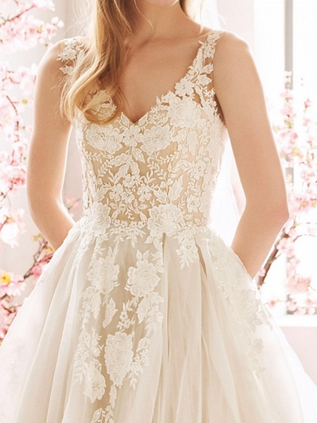 A-Line Wedding Dresses V Neck Sweep \ Brush Train Tulle Sleeveless Vintage Sexy Wedding Dress in Color See-Through Backless_2