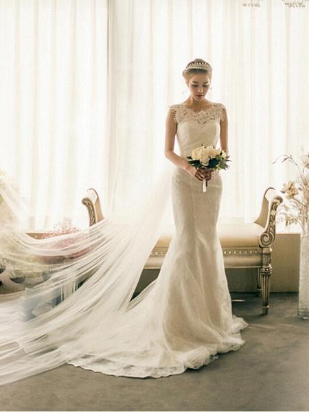 Mermaid \ Trumpet Wedding Dresses Bateau Neck Court Train Lace Tulle Cap Sleeve Plus Size_2