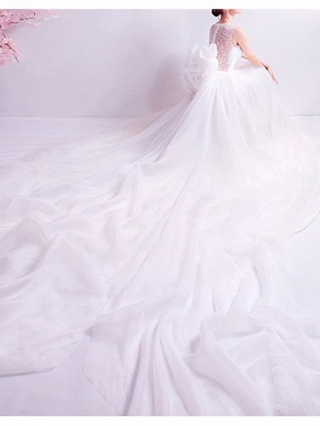 A-Line Wedding Dresses Jewel Neck Watteau Train Chiffon Tulle Sleeveless Formal Illusion Detail Plus Size_4
