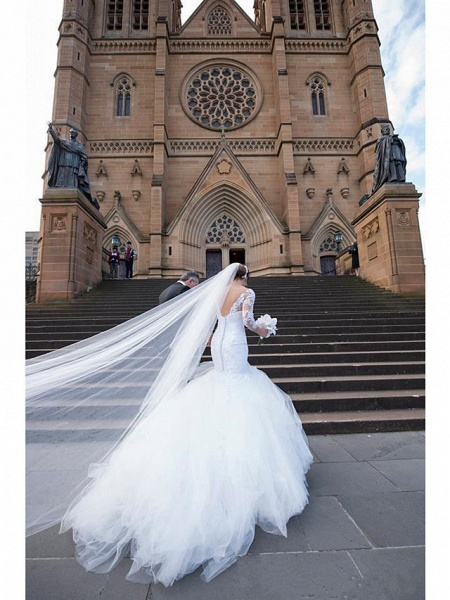 Mermaid \ Trumpet Wedding Dresses V Neck Court Train Lace Organza Tulle 3\4 Length Sleeve Sexy Wedding Dress in Color_2