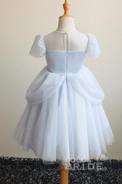 Light Blue Scoop Neck Short Sleeves Ball Gown Dress_2