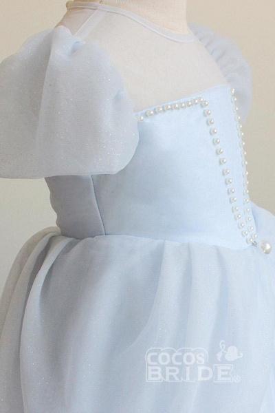 Light Blue Scoop Neck Short Sleeves Ball Gown Dress_3