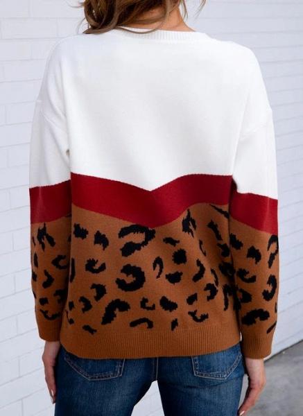 Round Neckline Leopard Casual Loose Regular Shift Sweaters_5