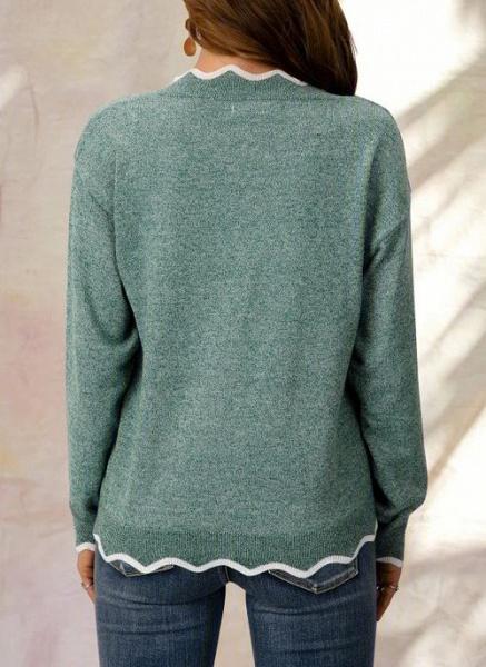 V-Neckline Color Block Casual Loose Regular Shift Sweaters_4