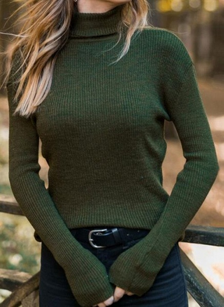 High Neckline Solid Casual Tight Regular Shift Sweaters_4