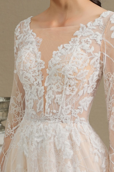 CPH230 Sheer Tulle Long Sleeve A-line Illusion Lace Wedding Dress_14