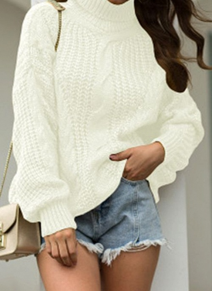 High Neckline Solid Casual Loose Regular Shift Sweaters_1
