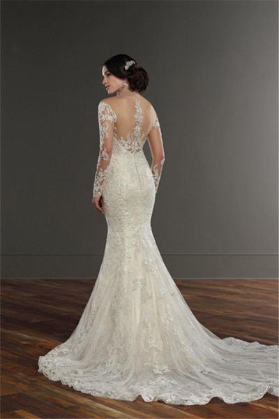 SD1153 Elegant Mermaid  Long Sleeve Lace Appliques Sheer Tulle Wedding Dress_2